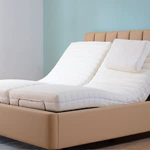 Double Electrical Care Bed